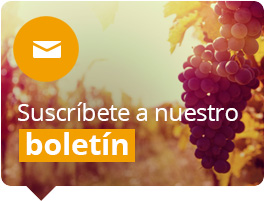 Actualidad y el mundo del vino en Wine to you