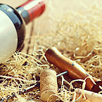 Los mejores vinos están disponibles en Wine to you