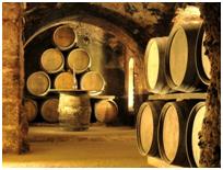 Wine to you tiene bodegas con encanto y los mejores vinos